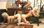 LIVE Girls Next Door! Bio's, Emails & Unlimited Access. Click Here!